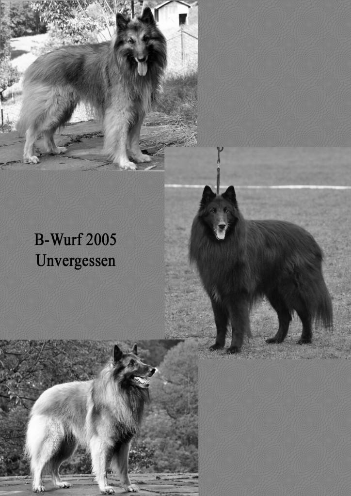B-Wurf_SW