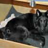 Mutter & Tochter 3 Wochen
